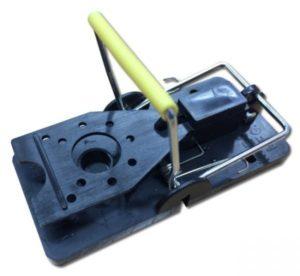 snap-e mouse trap 2